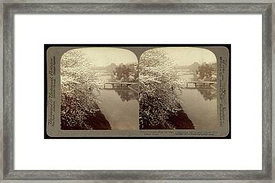 Cherry-blossoms Along The Moat Surrounding The Imperial Framed Print