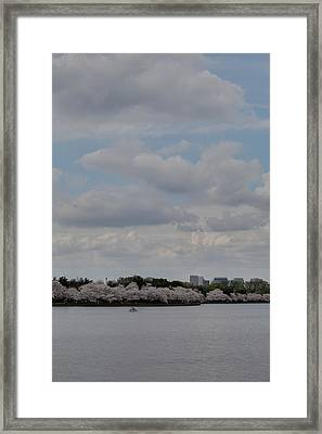 Cherry Blossoms - Washington Dc - 011324 Framed Print by DC Photographer