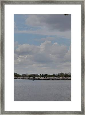 Cherry Blossoms - Washington Dc - 011326 Framed Print