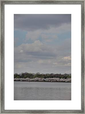 Cherry Blossoms - Washington Dc - 011334 Framed Print by DC Photographer