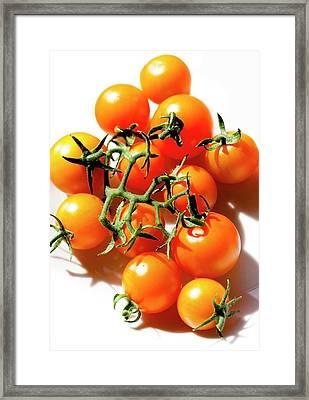 Cherry Tomatoes 'orange Paruche' Framed Print