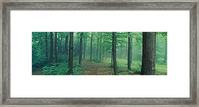 Chestnut Ridge Park, Orchard Park, New Framed Print by Panoramic Images