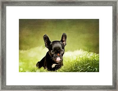 Children's Picture Framed Print