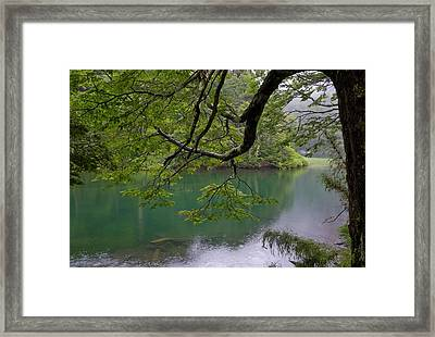 Chile South America Temperate Framed Print