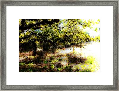 Chime Tree Framed Print