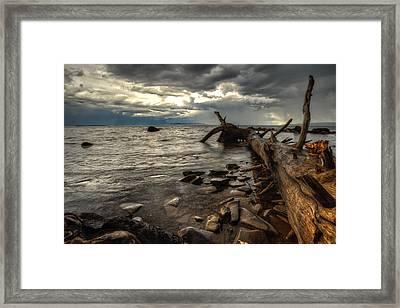 Chippewa  Framed Print by Jakub Sisak