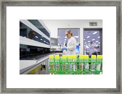 Chlamydia Testing Framed Print