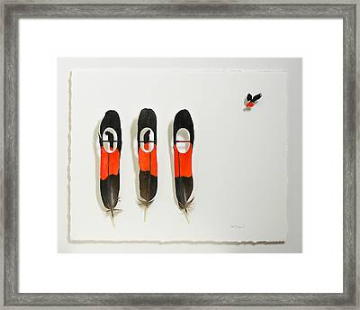 Choices M Framed Print by Chris Maynard