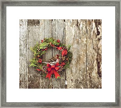 Christmas Wreath. Framed Print by Kelly Nelson