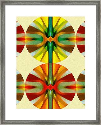 Circle Pattern 2 Framed Print by Amy Vangsgard