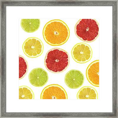 Citrus Fruit Slices Framed Print by Science Photo Library