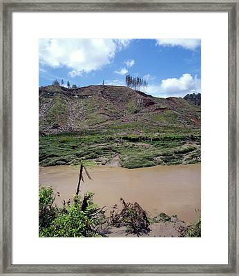 Cleared Forest Beside A Sediment-laden River Framed Print by Simon Fraser/science Photo Library