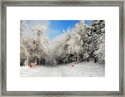 Clearing Skies Framed Print by Lois Bryan