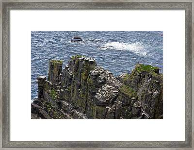 Cliffs Of Moher Framed Print by Bob Gibbons