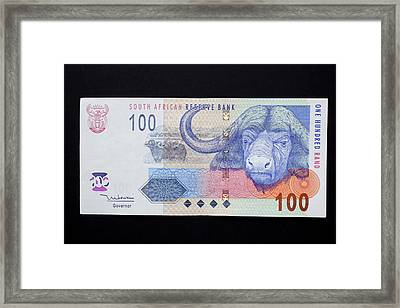 Close-up Of South African Rand Paper Framed Print