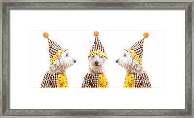 Clowning Around Framed Print by Edward Fielding