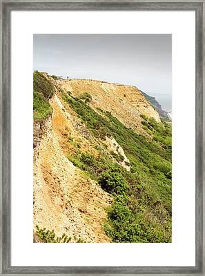 Coastal Cliff On The Jurassic Coast Framed Print