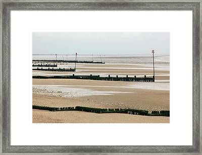 Coastal Defences Framed Print by Colin Cuthbert/science Photo Library