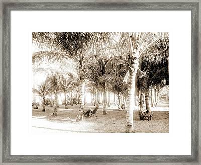 Cocoanut Grove At Mccormicks, Lake Worth, Fla Framed Print