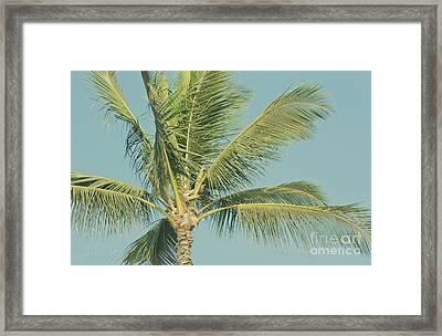 Cocos Nucifera - Niu - Palma - Po'olenalena Beach Maui Hawaii Framed Print by Sharon Mau