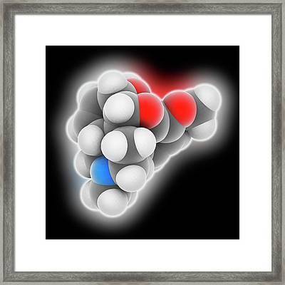 Codeine Drug Molecule Framed Print
