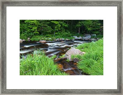 Cold Stream In Maine's Northern Forest Framed Print by Jerry and Marcy Monkman