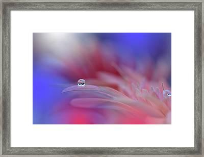 Colorful Explosion... Framed Print