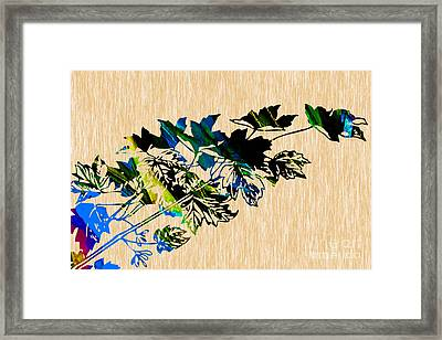 Colorful Leaves Framed Print by Marvin Blaine