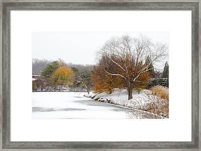 Colors Of Winter Framed Print