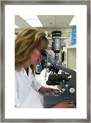 Commercial Chemistry Lab Framed Print