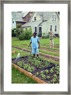 Community Garden Volunteers Framed Print