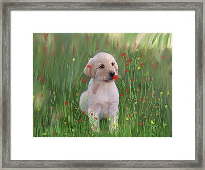 Computer Generated Portrait Of A Dog Framed Print