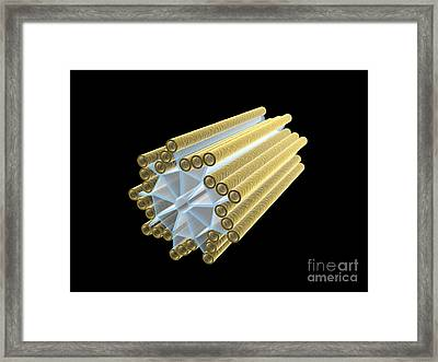 Conceptual Image Of Centriole Framed Print