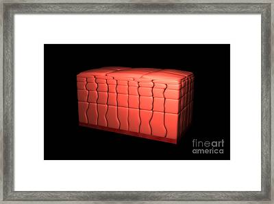 Conceptual Image Of Stratified Squamous Framed Print by Stocktrek Images