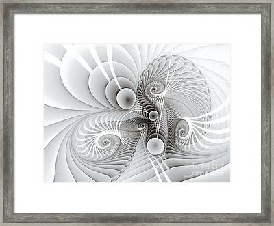 Connections Framed Print by Jutta Maria Pusl