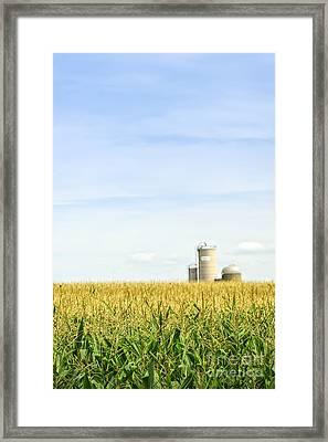 Corn Field With Silos Framed Print by Elena Elisseeva