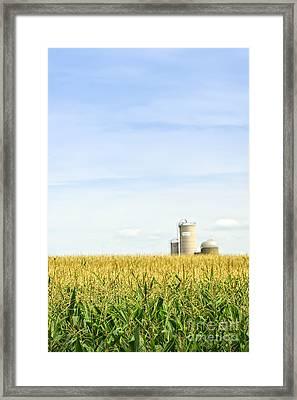 Corn Field With Silos Framed Print