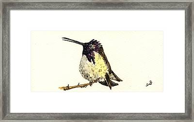 Costa S Hummingbird Framed Print by Juan  Bosco