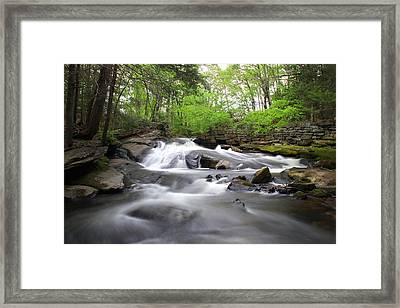 Cotton Hollow Framed Print