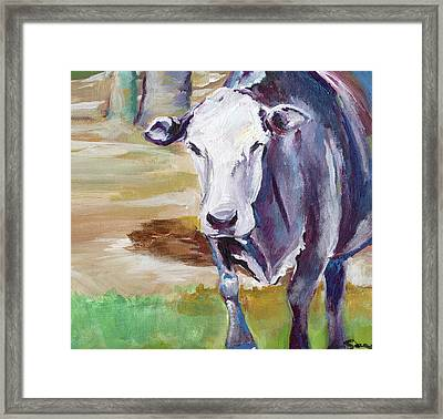 Cow Framed Print by Anne Seay