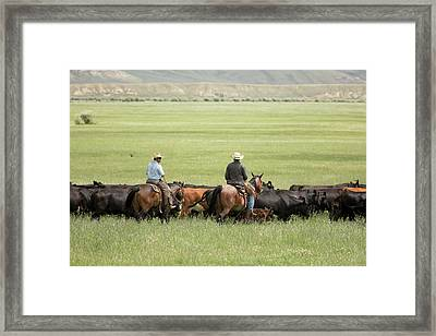 Cowboys Herding On A Cattle Ranch Framed Print by Jim West
