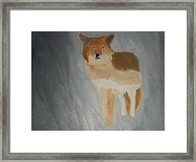 Coyote Oil Painting Framed Print by William Sahir House