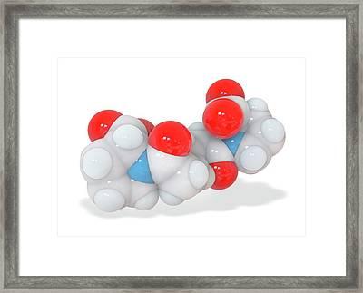 Cphpc Anti-amyloid Drug Molecule Framed Print
