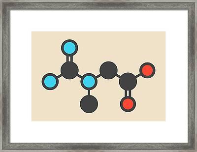 Creatine Molecule Framed Print by Molekuul