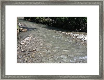Creek In Montana Framed Print by Larry Stolle