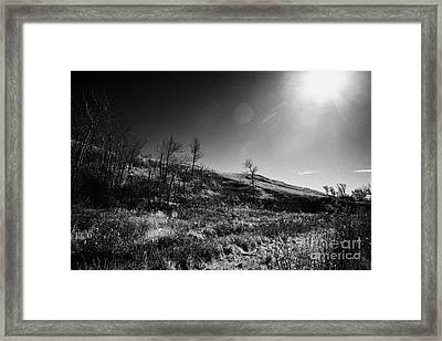 creek valley in Wanuskewin heritage park saskatoon Saskatchewan Canada Framed Print by Joe Fox