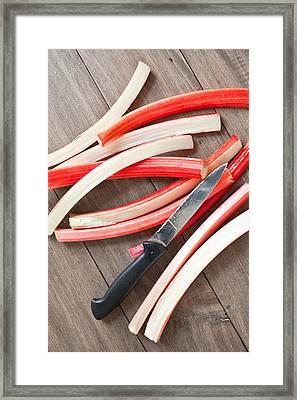 Cutting Rhubarb Framed Print