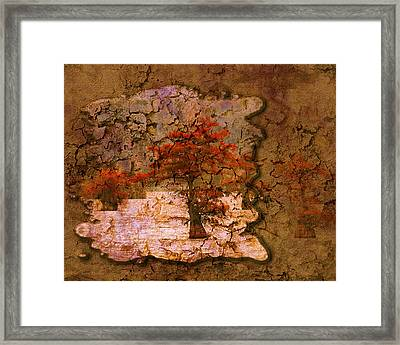 Cypress - Abstract Framed Print by J Larry Walker