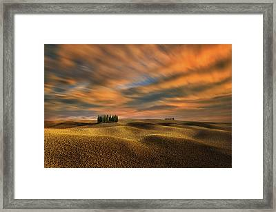 Cypresses... Framed Print