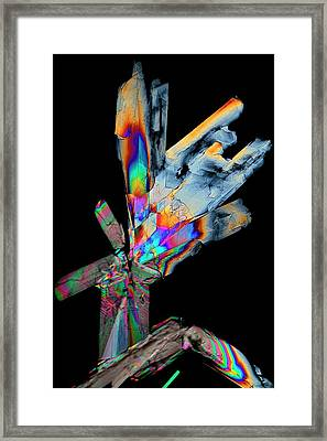Cysteine Crystals Framed Print by Antonio Romero
